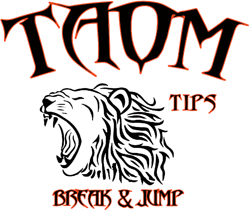 taomtips-official-logo-2015-10